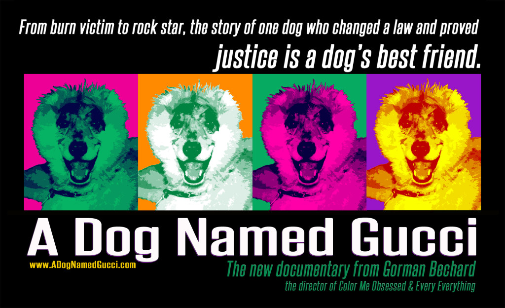 A Dog Named Gucci BANNER-1